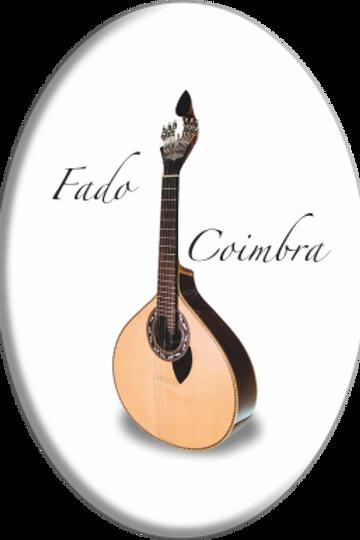 Íman oval Coimbra 6 - embª 12