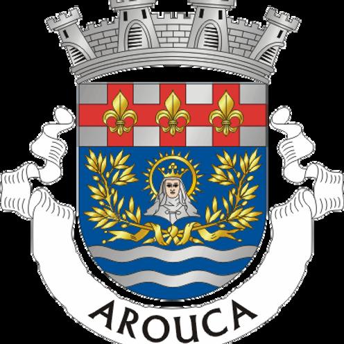 Autocolante Vinil - embª 24 - Arouca
