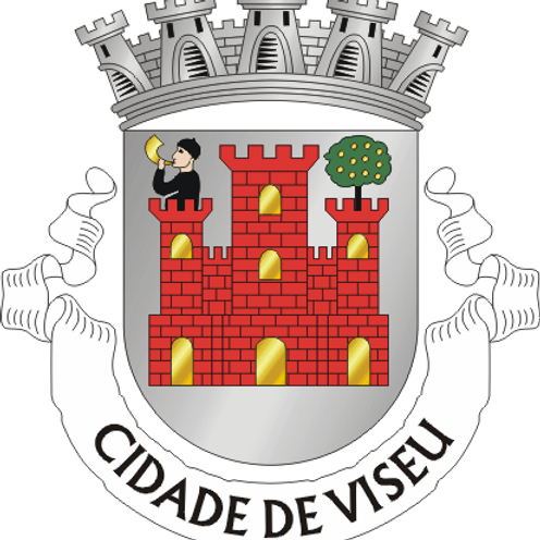 Autocolante Vinil - embª 24 - Viseu