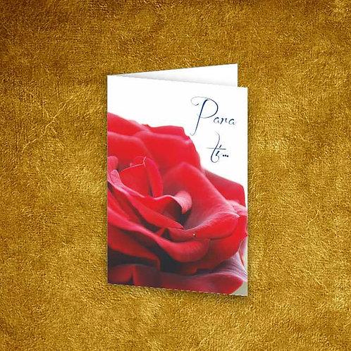 Mini Cartão com envelope - embª 12 - refª 10