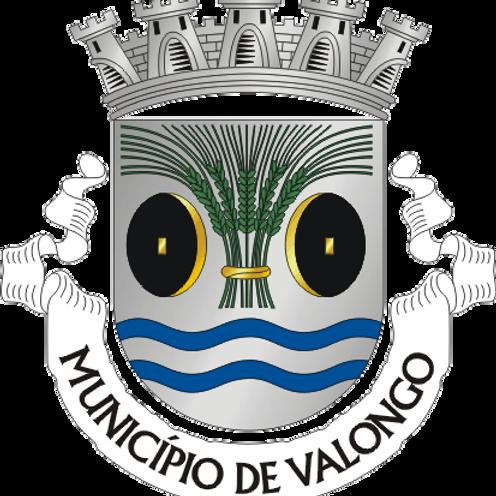 Autocolante Vinil - embª 24 - Valongo