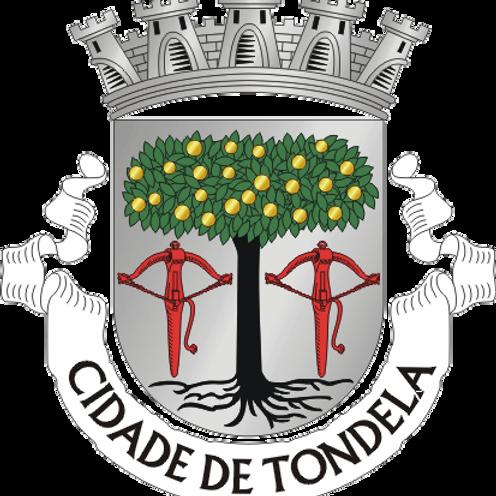 Autocolante Vinil - embª 24 - Tondela