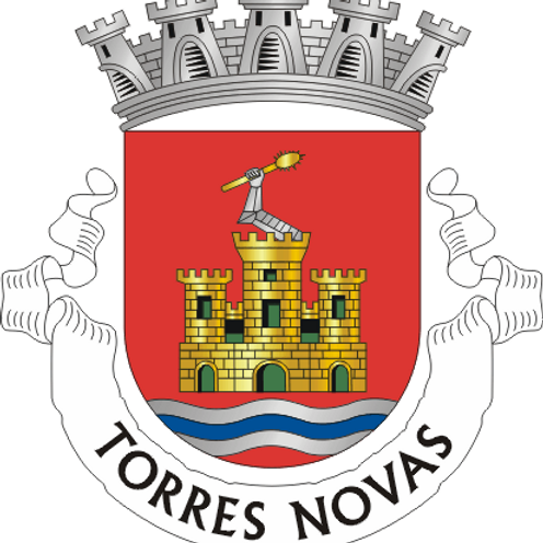Autocolante Vinil - embª 24 - Torres Novas