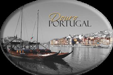 Íman oval Porto 5 - embª 12