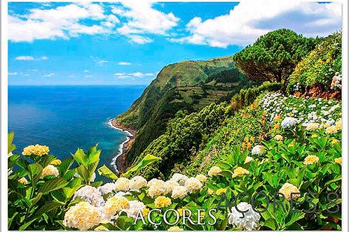 Açores 8