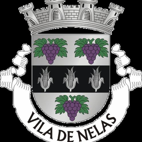 Autocolante Vinil - embª 24 - Nelas