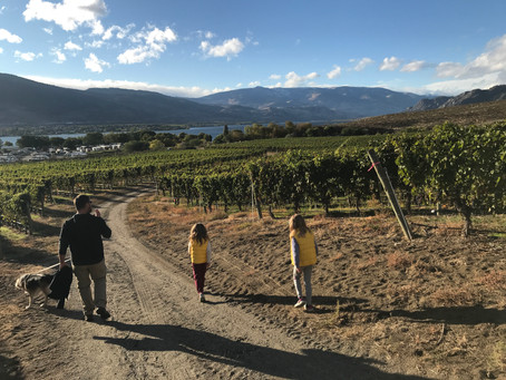 Week 8 - PeachLand and Osoyoos
