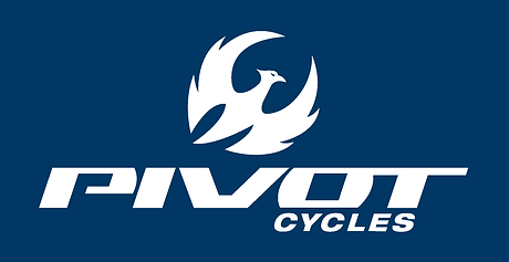 Pivot Stacked Logo_Page_4.png