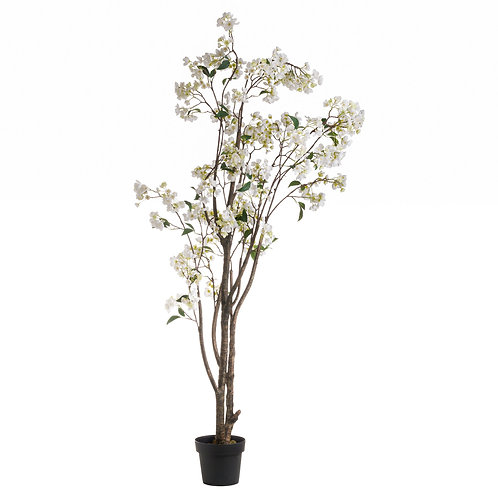 White Wedding Tree