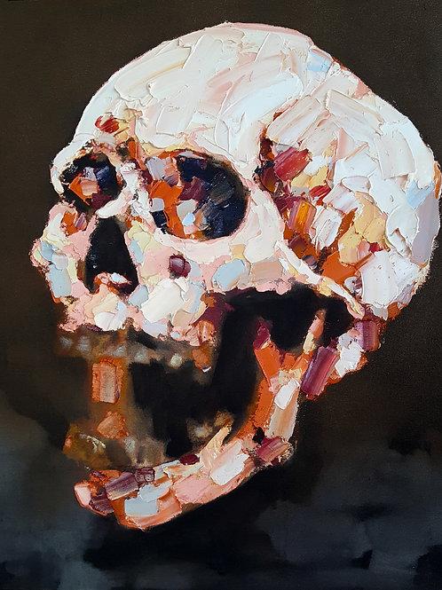 Thomas Donaldson 5-8-19 Skull Study