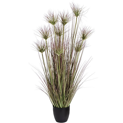 Water Bamboo Grass 48 Inch