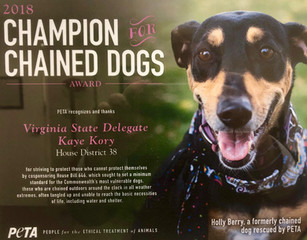 2018 Champion for Chained Dogs