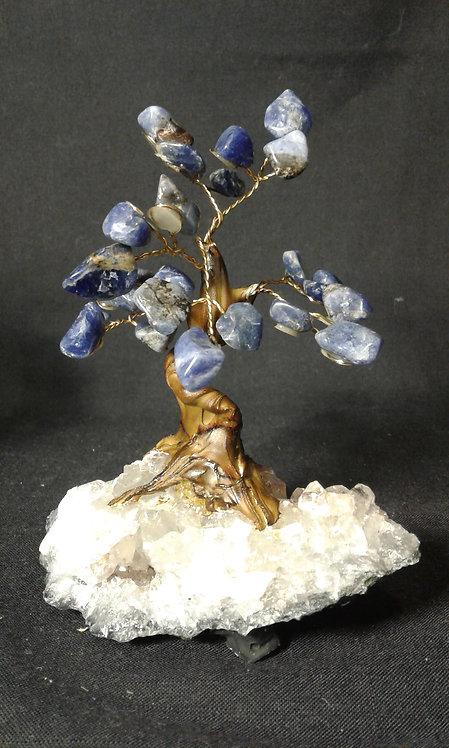 Sodalite Tree of Life
