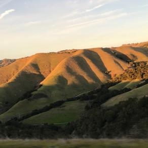 Paso Robles & Cambria:  California Dreaming, perhaps, or was it just a wine coma