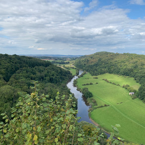 UK: Purposefully Perambulating in The Forest of Dean