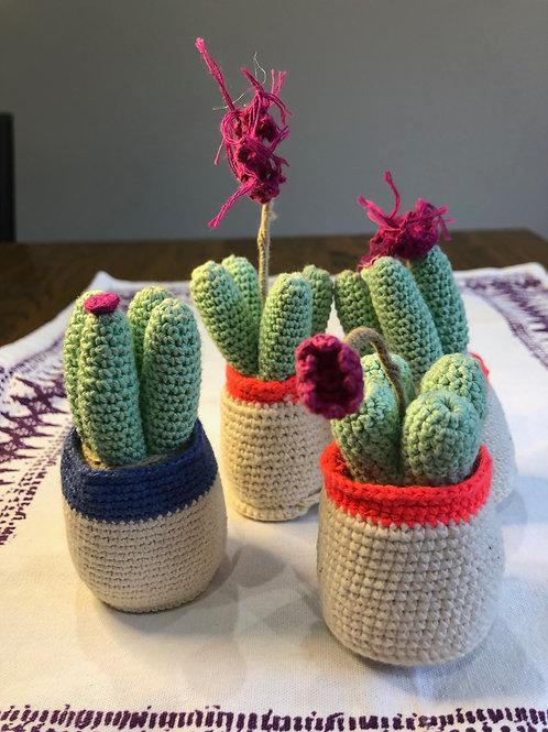 Knit Cactus