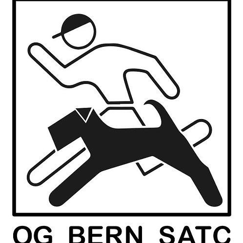 Aufkleber SATC-OG Bern