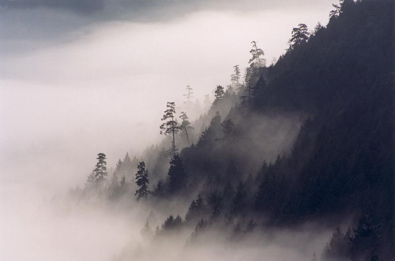 cloud mt
