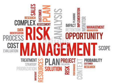 Projektbezogenes Risikomanagement