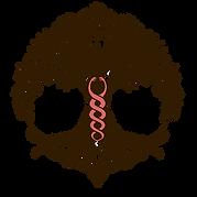 Logo vědomí transformace