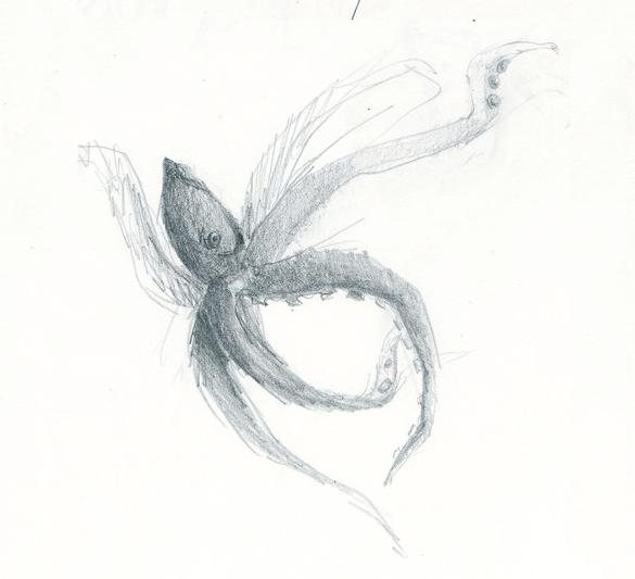 sketch_octo.png