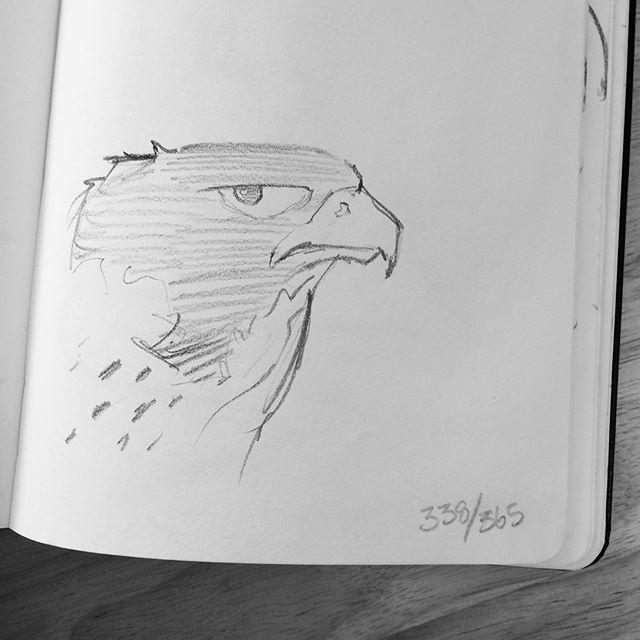 Day 338.  Shape design Falcon