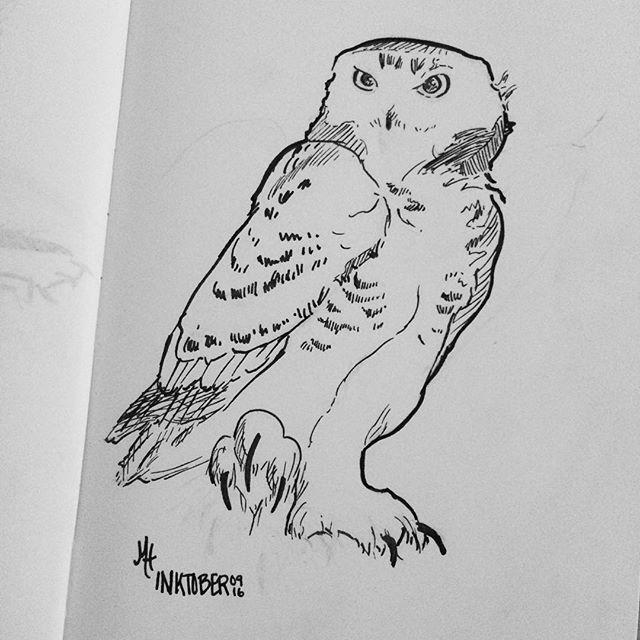 Snowy Owl #inktober #inktober2016