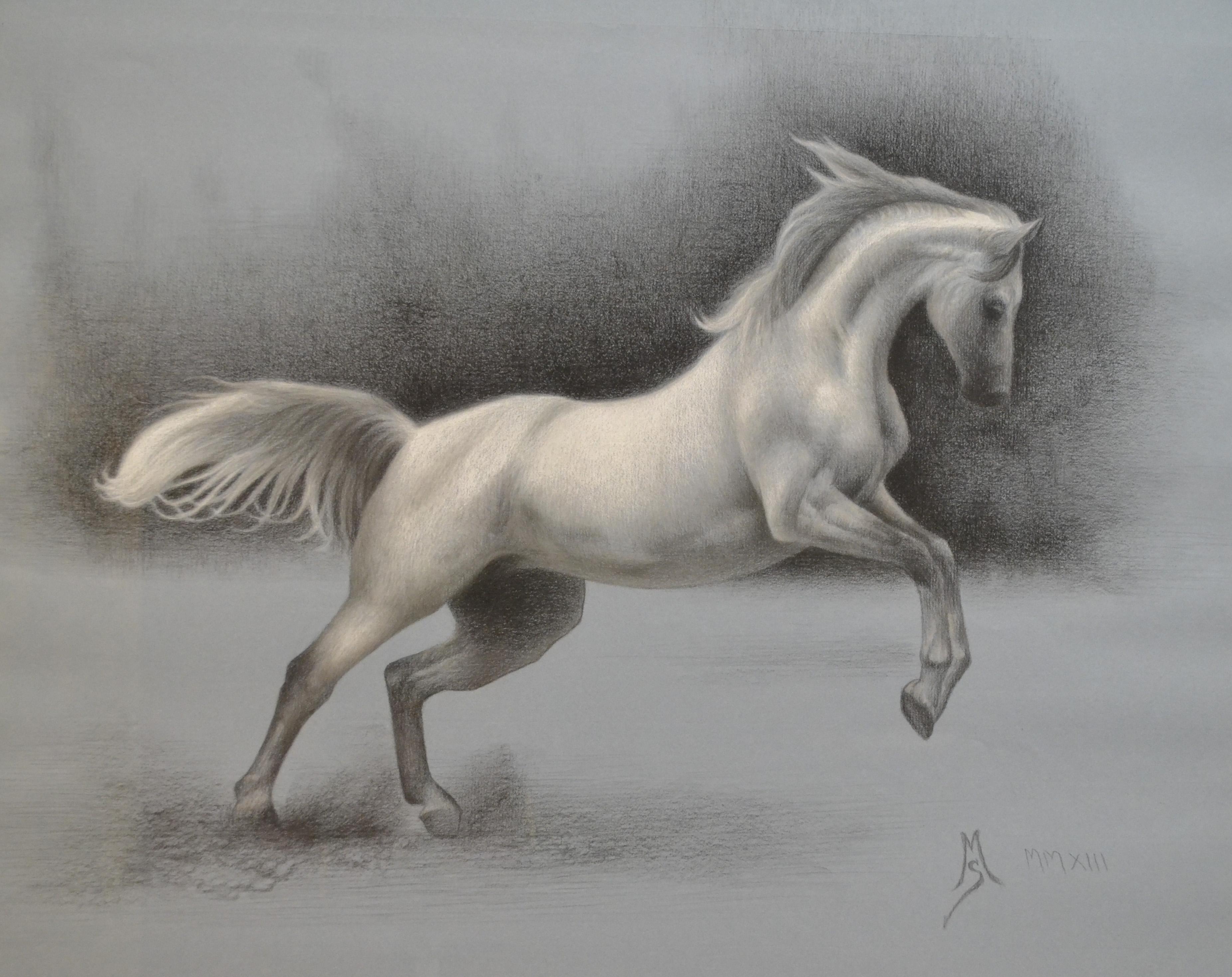 Arabian Horse Opus # 3.jpg