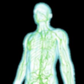 male-lymphtaic-system-massage.png