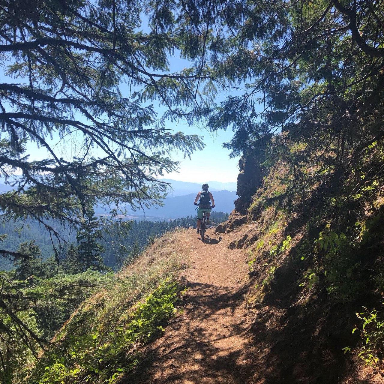 Alpine Trail Shuttle