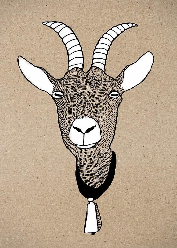 evelyn-trutmann-illustration_fauna_ziege