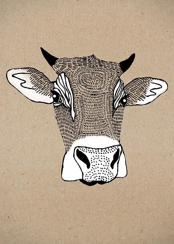 evelyn-trutmann-illustration_fauna_kuh.j
