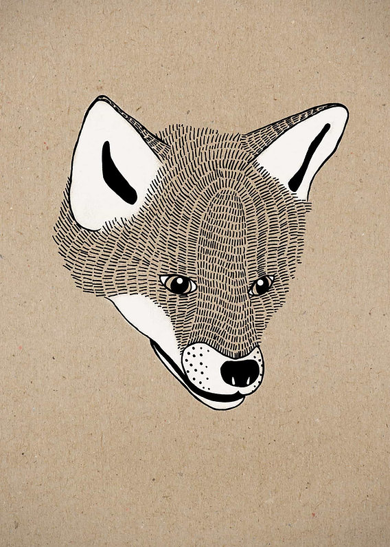 evelyn-trutmann-illustration_fauna_fux.j