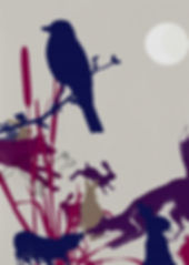 evelyn-trutmann-illustration_wildlife_an