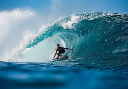 QUARTERFINALISTS VOTED IN AT FIREWIRE E-PRO USA PRESENTED BY FUTURES