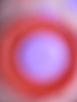 IMG_6500 61,41na46cm