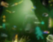 Misiek głębinowy.jpg