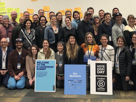 B Corps Launching Collective Action Strategies