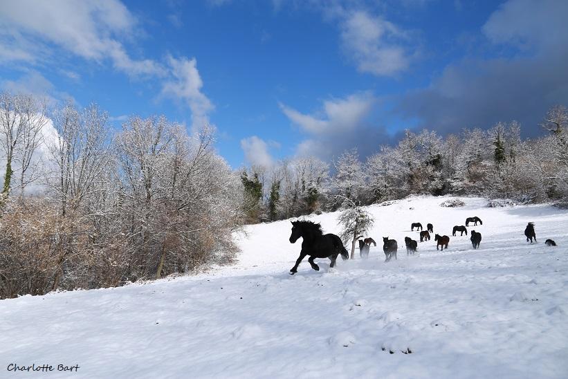 Un instant magique à vivre en hiver