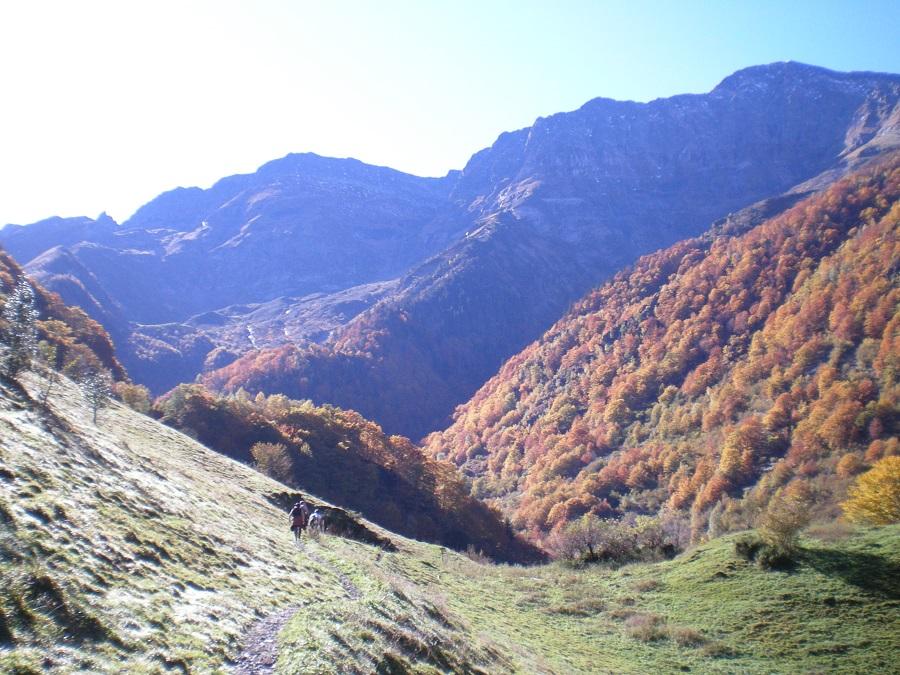 2009.10.26_chevaux_à_Graouillés_003