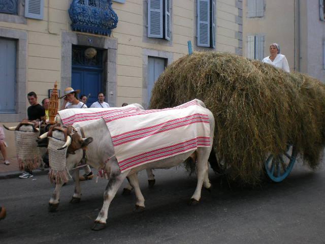 2008.08.03 Autrefois le Couserans (70)