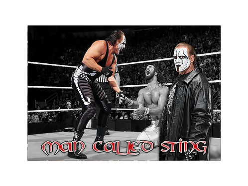 Sting (Man Called Sting)