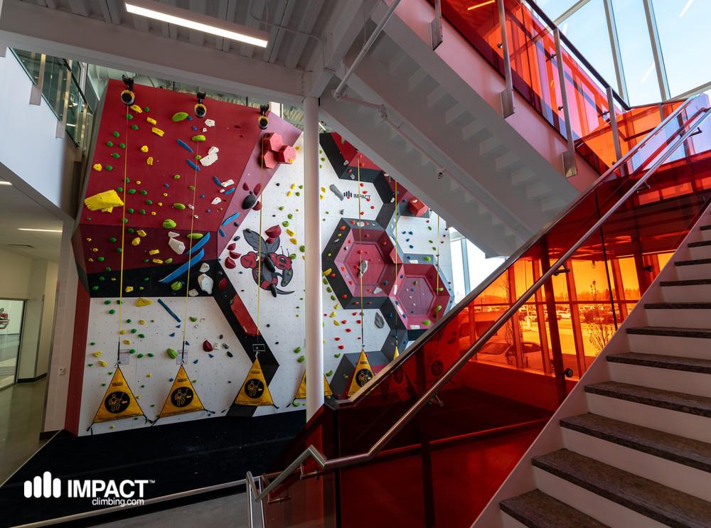 College Rock Climbing Wall
