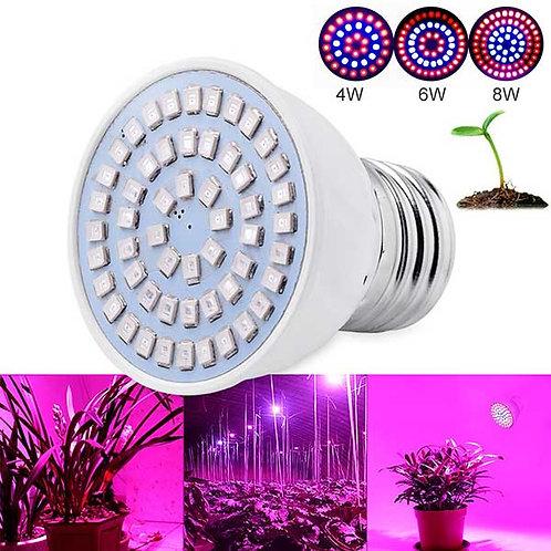 Pflanzenlampen 8W