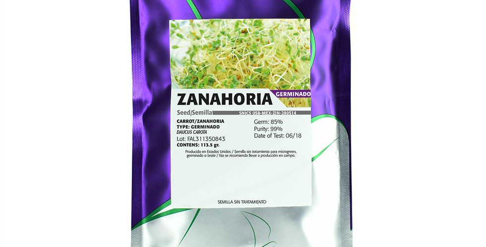 Germinado de Zanahoria