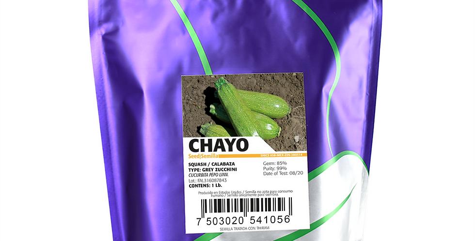 Calabaza Chayo