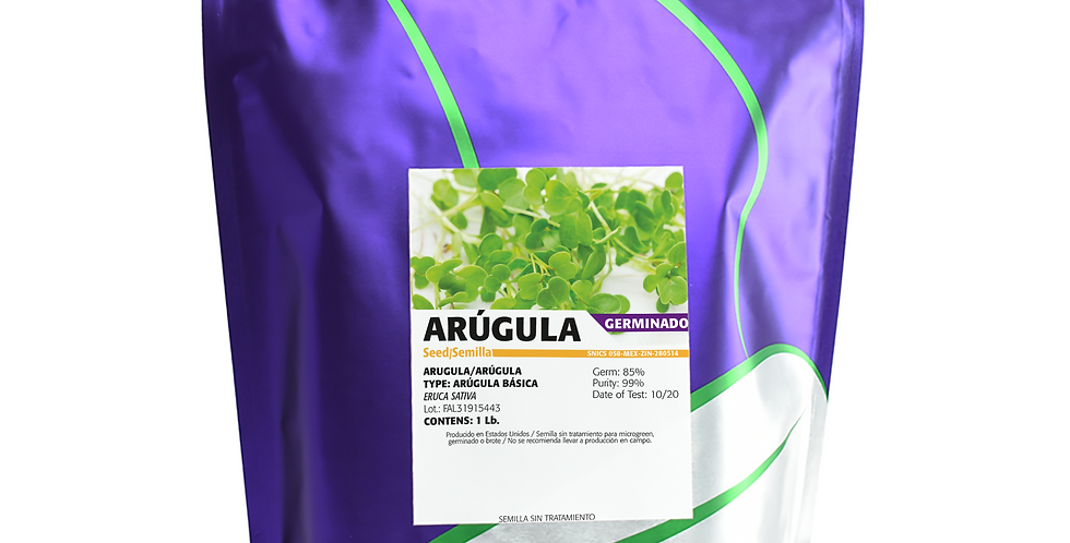 Germinado de Arúgula