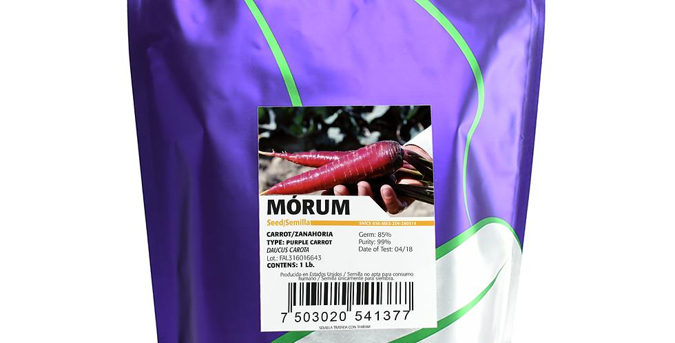 Zanahoria Morum