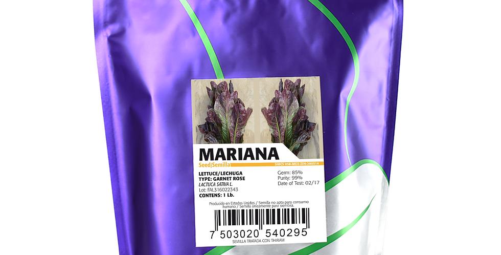 Lechuga Mariana