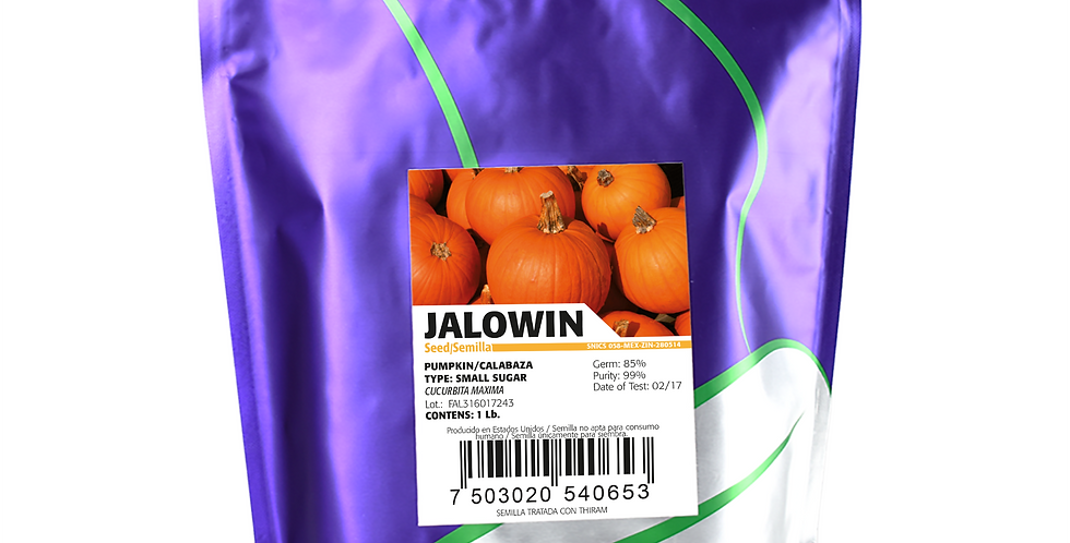 Calabaza Jalowin